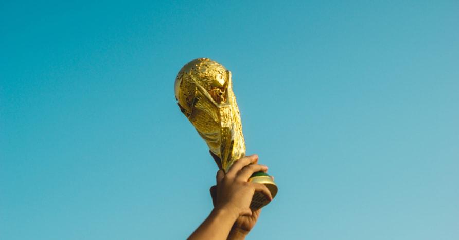 Tips Cara Pilih Seleksi Winning Olahraga Taruhan