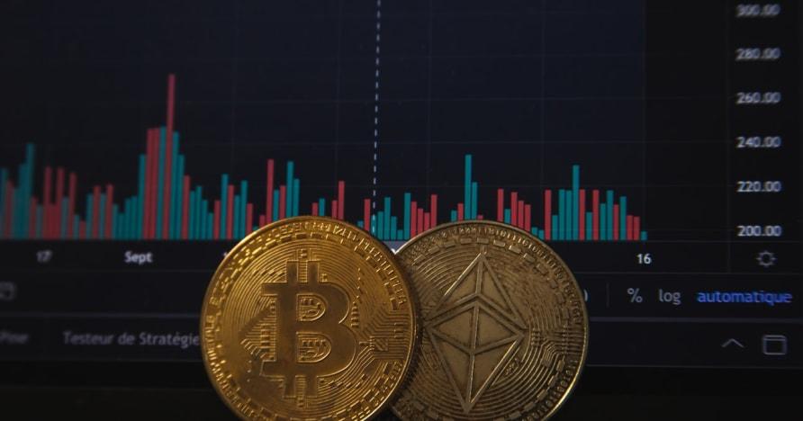 Cryptocurrency Populer untuk Dibeli dan Dihindari untuk Perjudian Online